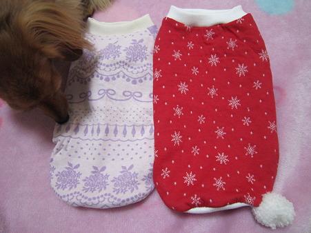 20101215 くんくんさん お洋服