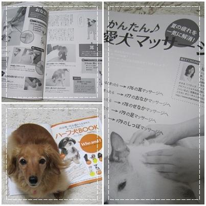 20110905 愛犬チャンプ&JURI