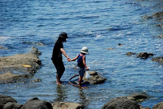 夏の海岸1