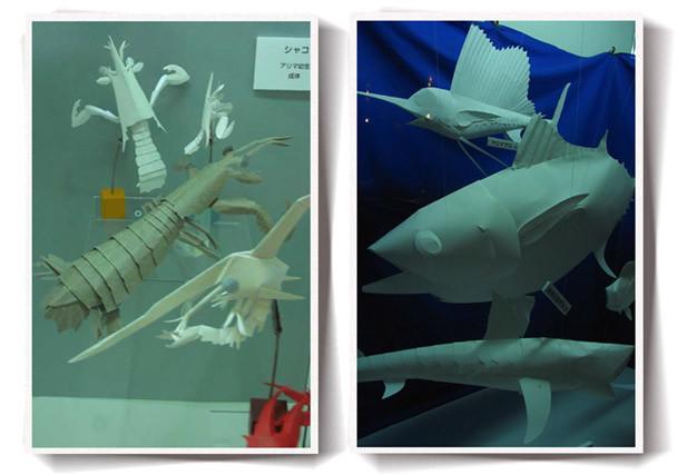 Photos: 葛西臨海水族園の展示3