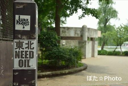 NEED OIL