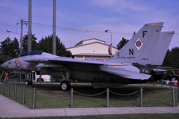 F-14 艦上戦闘機 Diamondbacks 塗装横から・・20110703厚木基地開放