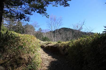 大菩薩嶺-20101103-121352