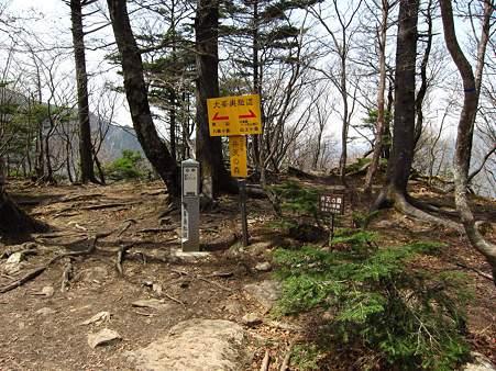 c-110504-131119 弁天の森付近