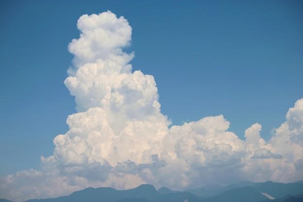 夏の雲・・・恐竜の横顔に似た雲