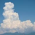 写真: 夏の雲・・・恐竜の横顔に似た雲