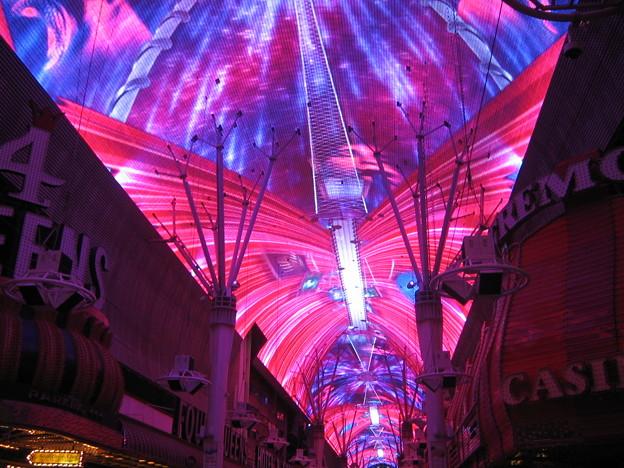 IMG_3644+ Viva Vision Pinky Purple BGD