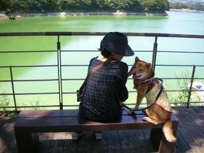 津久井湖 水の苑池