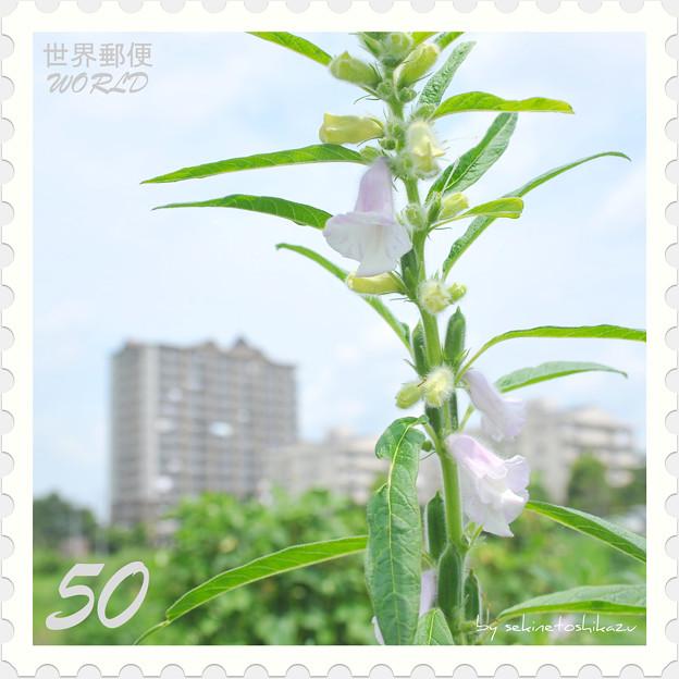 <花切手*ゴマの花 on 世界郵便>