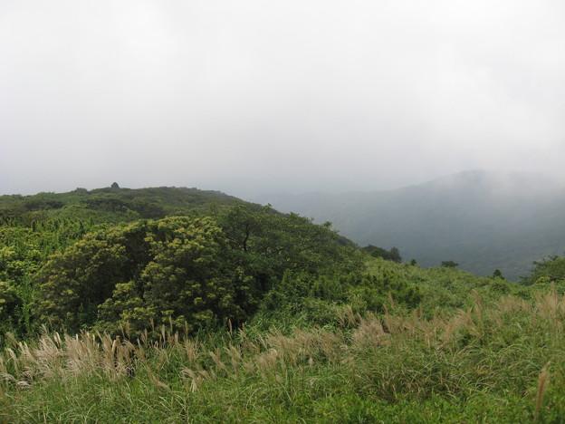Photos: 駿河湾が見えるはずでした